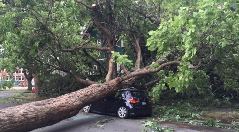 Windstorm car emergency